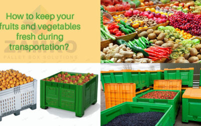 Which pallet boxes will keep your fruits and vegetables fresh during transportation?